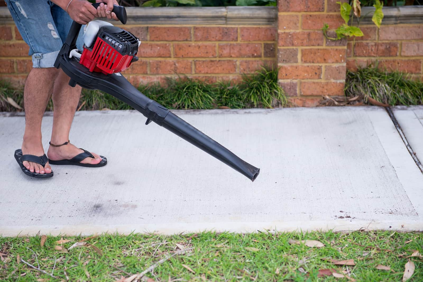 5 Best gas leaf blowers