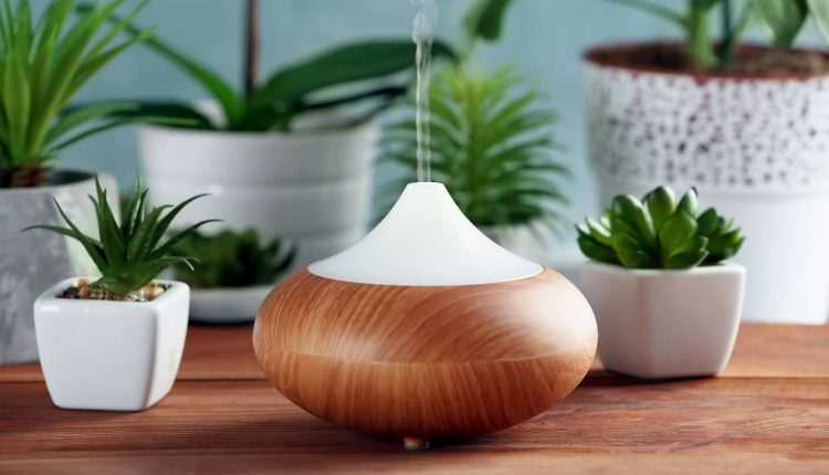 Best Diffuser Review